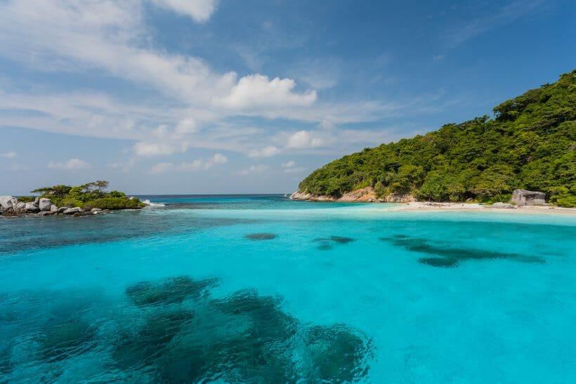 Coral Island sea