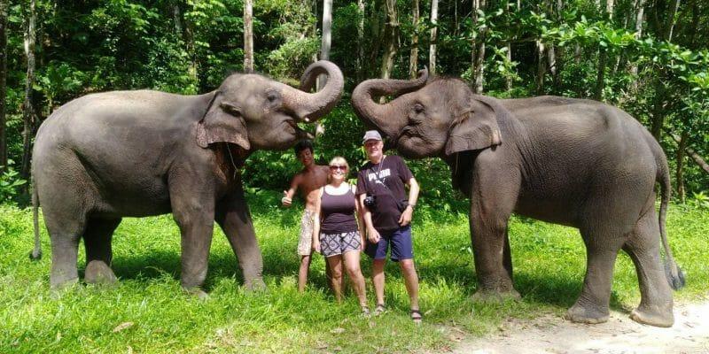 Kamala Elephant Bareback Riding Phuket B2