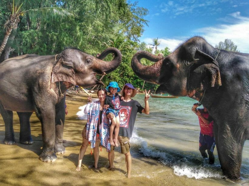 Kamala Elephant Bathing Phuket A1