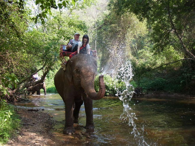 Phupa Elephant Trekking Phuket D2