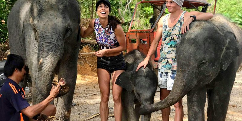 Elephant Care Program 90 Mins Phuket
