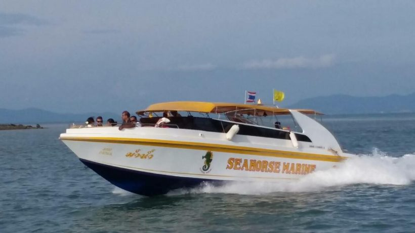 Speed boat sea horse