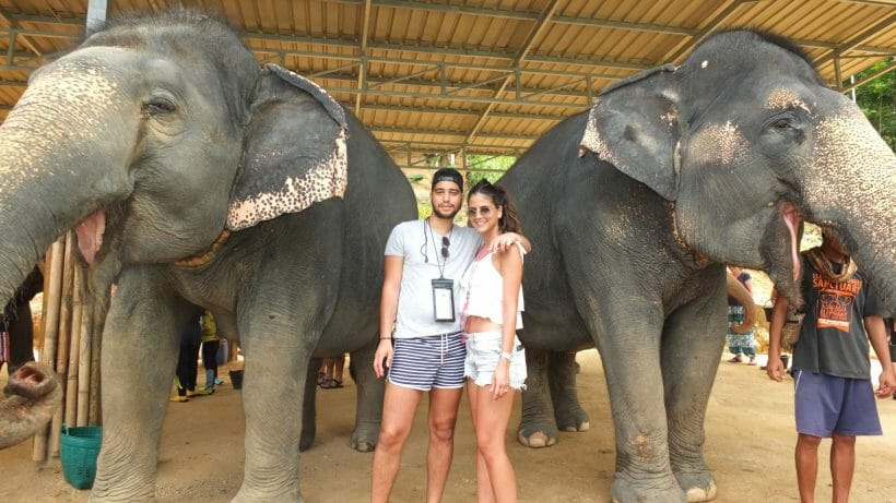 Half Day Visit Elephant Jungle Sanctuary