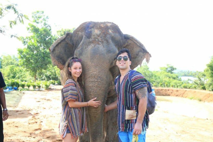 Half Day Visit Elephant Jungle Sanctuary