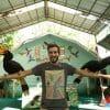 Phuket Animal Tour 2019