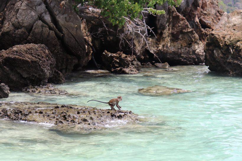 monkey beach james bond island