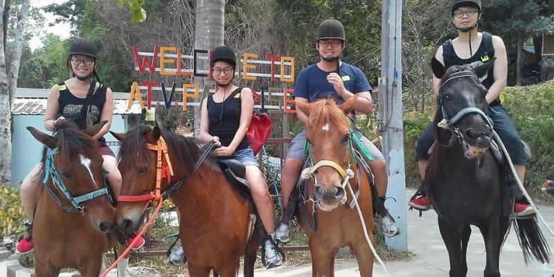 Phuket Horse Riding Tour