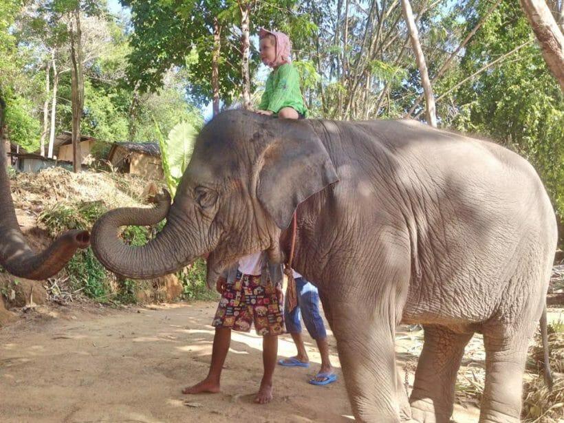 Phuket Paradise Adventure