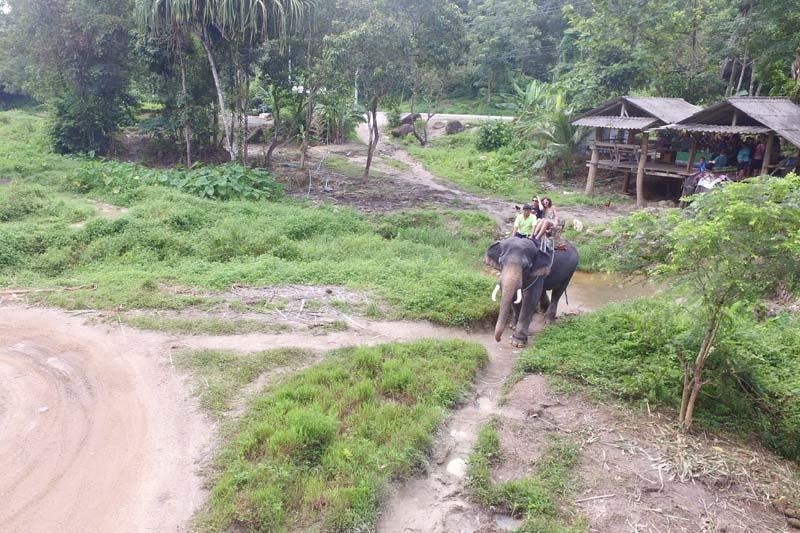Khaolak Safari