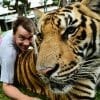 Medium Tiger Kingdom Phuket