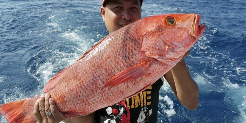 Private Fishing Tour Phuket