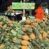 phuket-pineapples